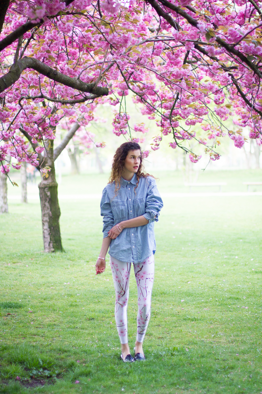 cherry blossoms-6760