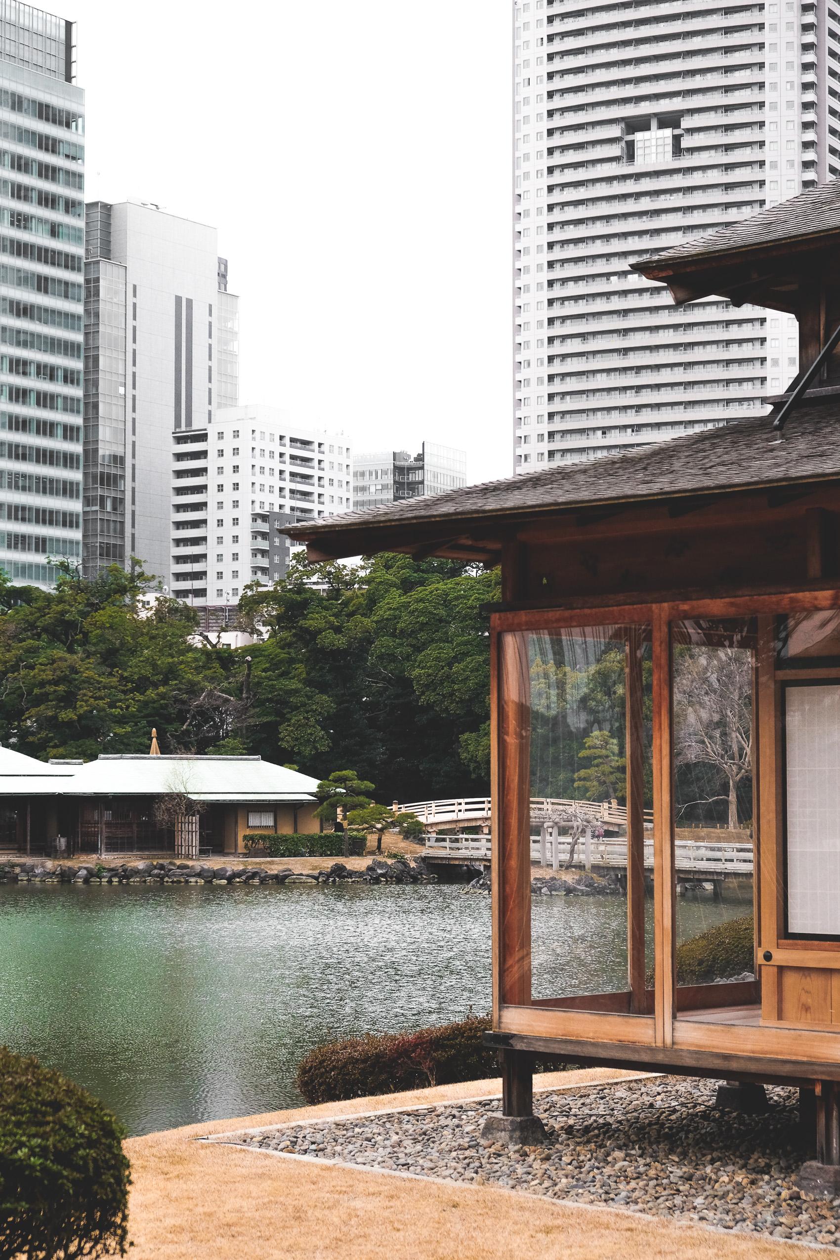 Tokyo Guide-26