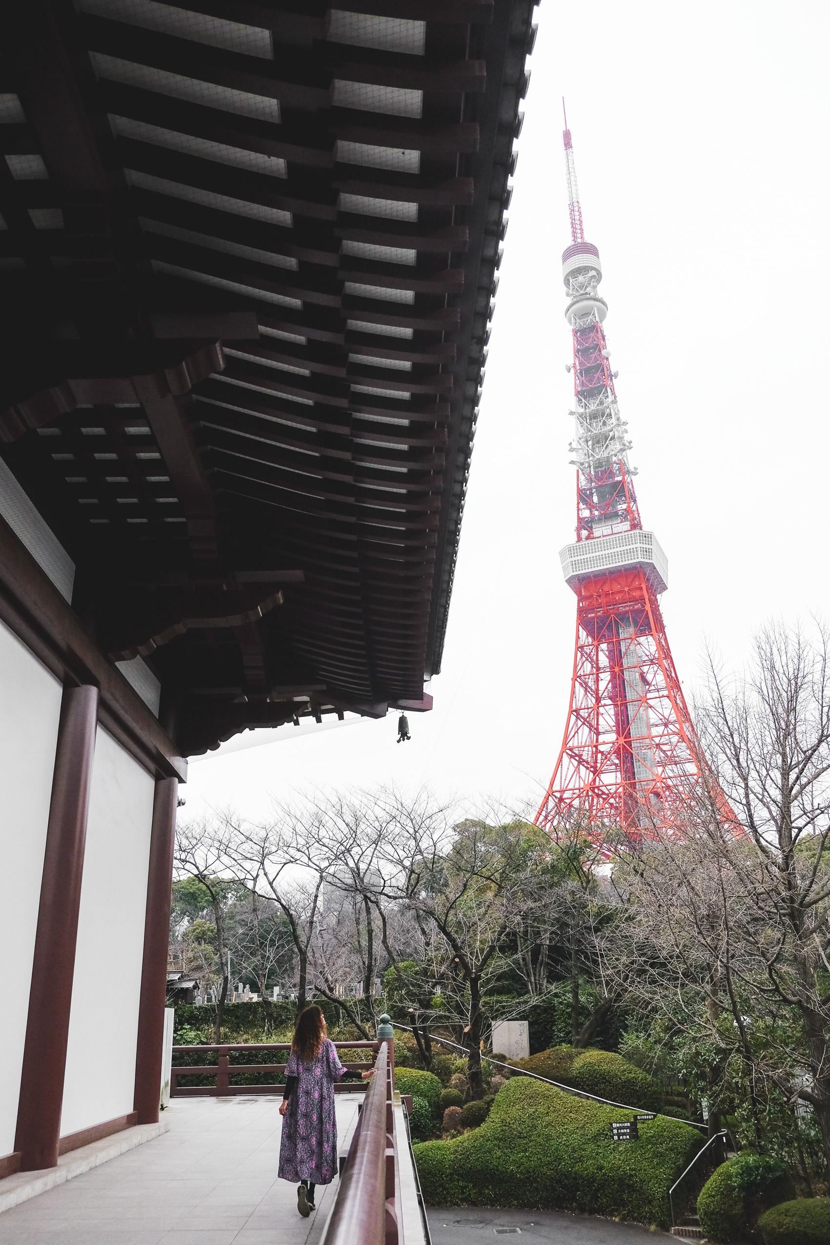 Tokyo Guide-28