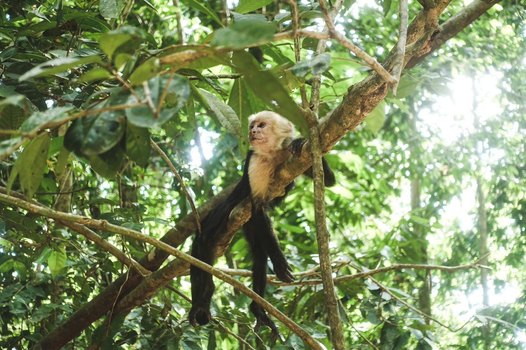 Costa Rica Guide-29