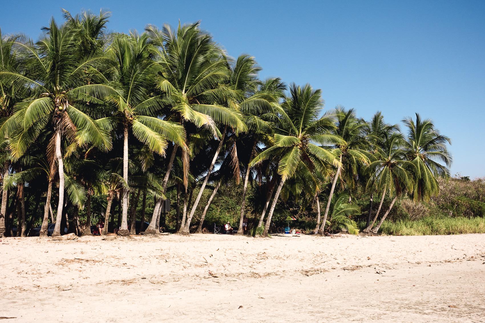 Costa Rica Guide-7