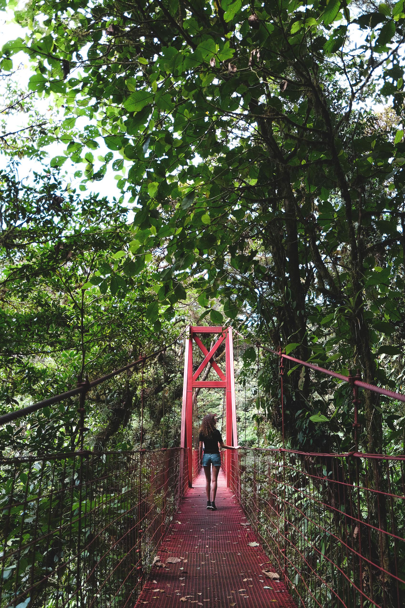 Costa Rica Roadtrip-1