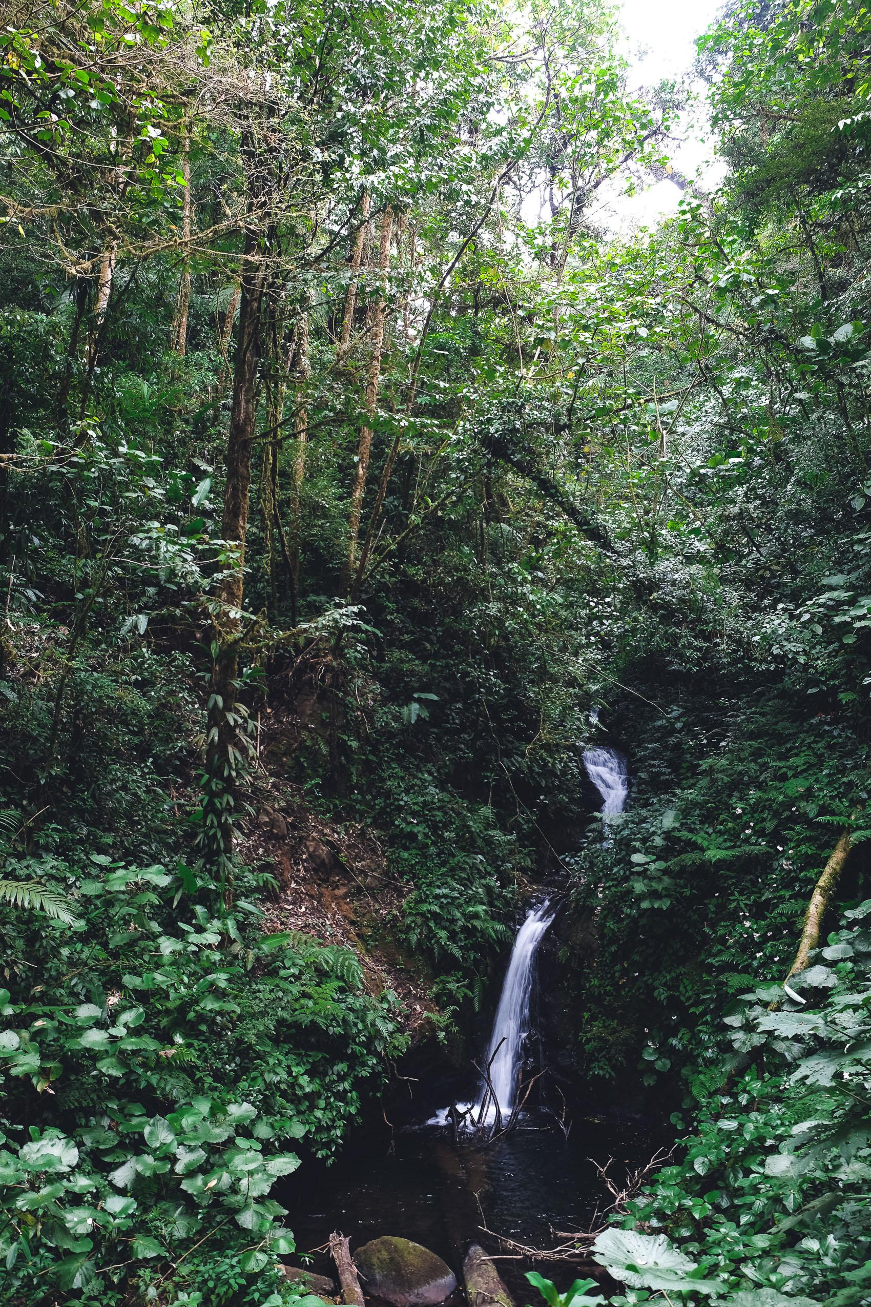 Costa Rica Roadtrip-3