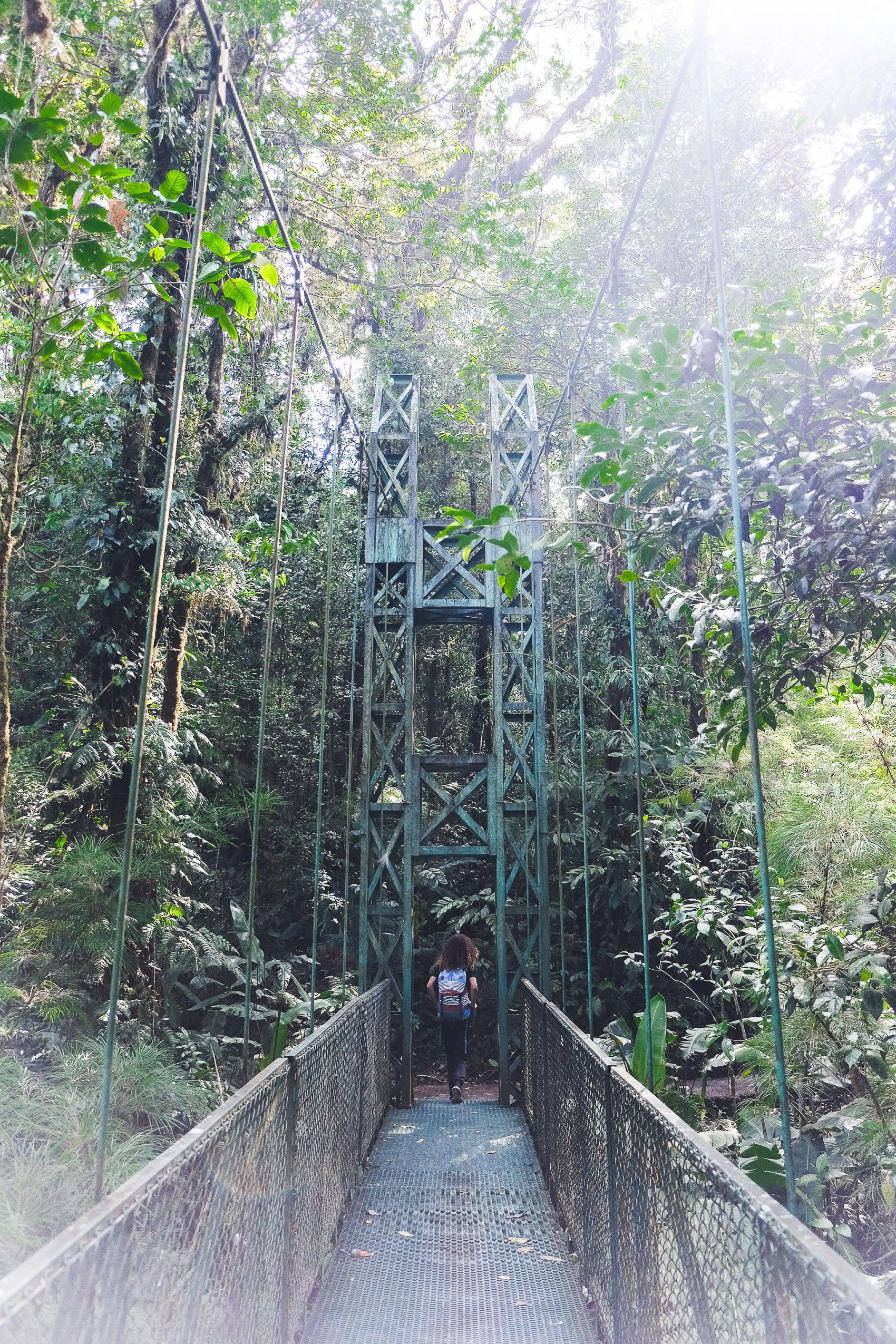 Costa Rica Roadtrip-4