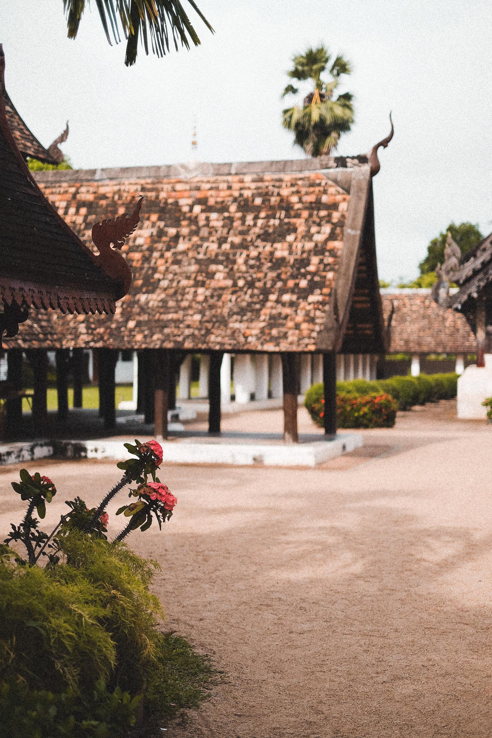 Chiang Mai Travel Guide